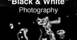Black & White Photography Contest