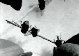 Bigas Luna, Necklace of Flies (Collar de Moscas), 2002, video