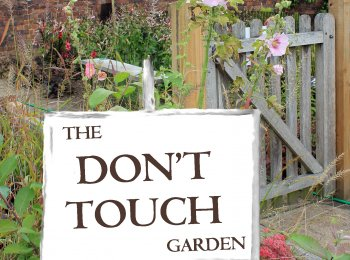 Cover image for The Don't Touch Garden