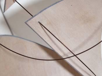 Silver Birch by Morven Browne
