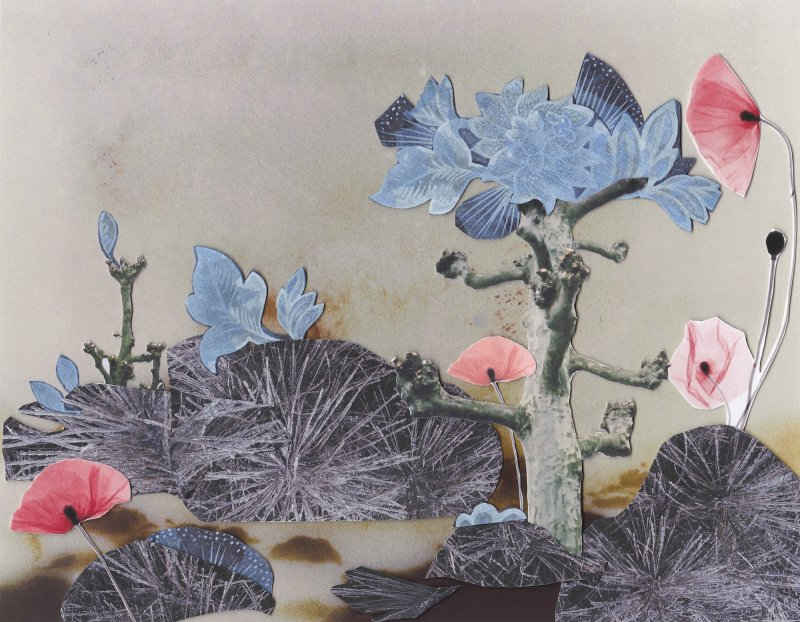 Giovanna Petrocchi, Kyoto Is Blue, 2015