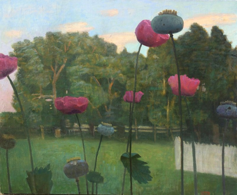 John Beerman, Chatwood Poppies at Dusk, 2016, oil on linen, 30 x 36 inches